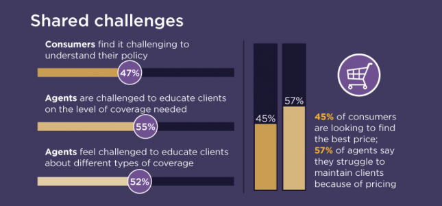 shared challenges infographic